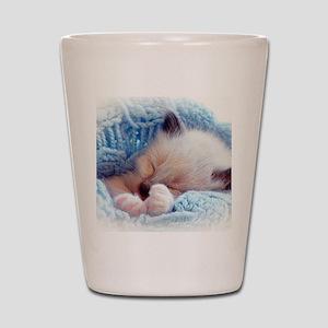 Sleeping Siamese Kitten Paws Shot Glass