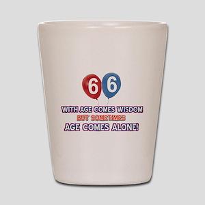 Funny 66 wisdom saying birthday Shot Glass