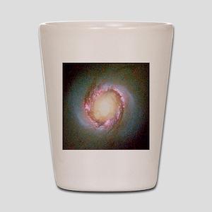 Star birth in galaxy NGC 4314 Shot Glass