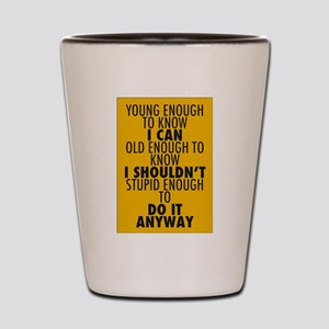 Young Old Stupid Do it Anyway Shot Glass