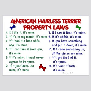 American Hairless Terrier Property Laws 2 Large Fr