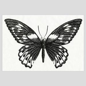 Stippled Butterfly