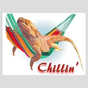 Bearded Dragon Chillin