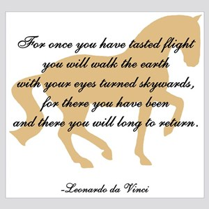 da Vinci flight saying - horse
