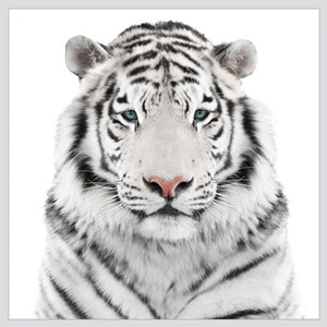 White Tiger Head Wall Art