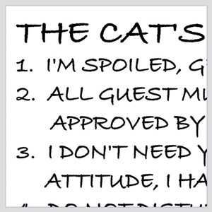 THE CAT'S RULES