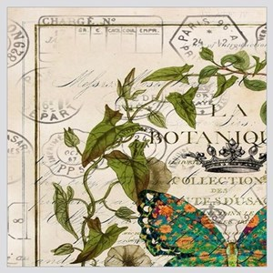 vintage botanical art butterfly