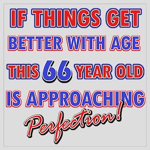 Funny 66th Birthdy designs