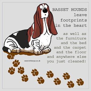 Basset's