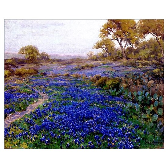 Bluebonnets at Twilight, North of San Antonio, Tex