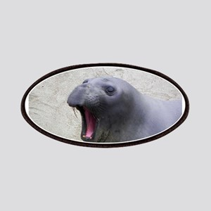 Yawning Elephant Seal Patches
