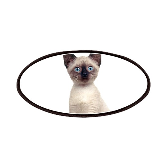 siamese kitten clear