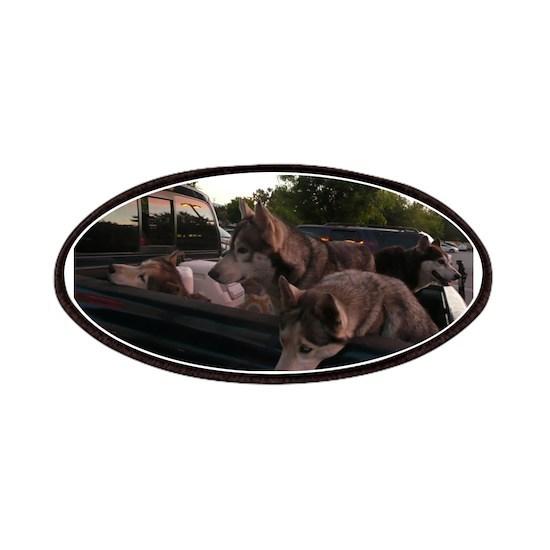 4 Siberian husky dogs in a green Dodge pickup truc