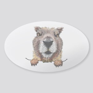 Yellow-bellied Marmot Sticker (Oval)