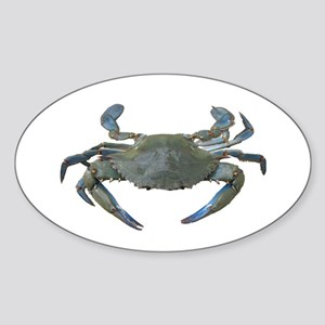 Chesapeake Bay Blue Crabs Oval Sticker