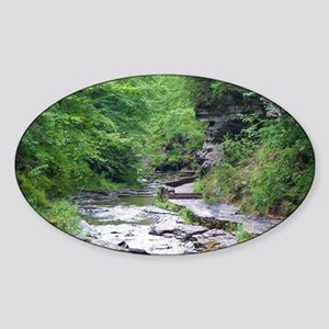 forest river scenery Sticker