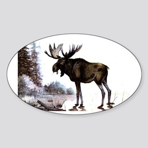 Moose Oval Sticker