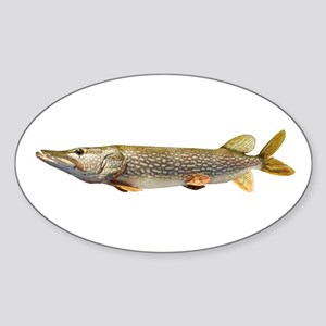 Northern Pike Sticker