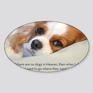 Cavalier King Charles Spaniel in He Sticker (Oval)