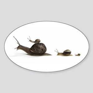 Snail Family Oval Sticker