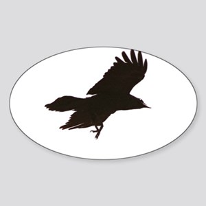 Crow Oval Sticker