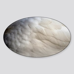 Angel Wing Sticker (Oval)