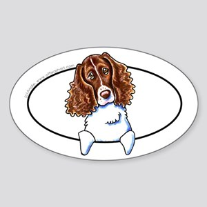 Springer Spaniel Peeking Bumper Sticker (Oval)