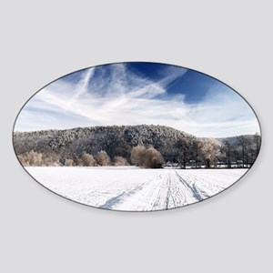 Beautiful winter Sticker (Oval)