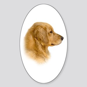 Golden Retriever Portrait Oval Sticker