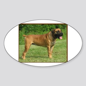 South African Mastiff Gifts - CafePress