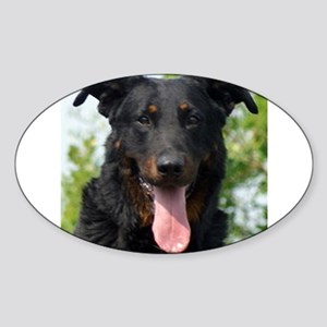 beauceron black and tan Sticker