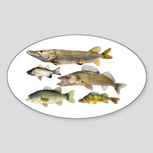 All fish Sticker