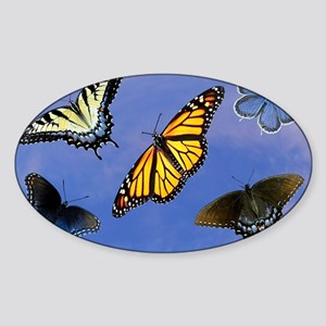 Butterfly Assortment Laptop Skin, C Sticker (Oval)