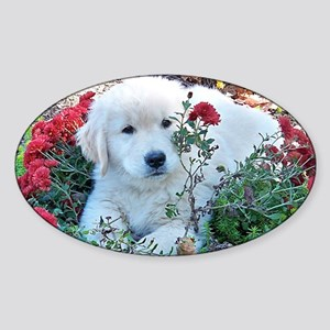 Golden Retriever Laptop Skin Sticker (Oval)