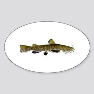Flathead Catfish Sticker