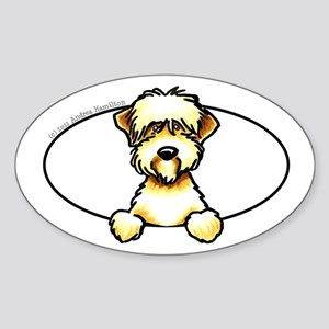 Soft Coated Wheaten Terrier Peeking Bumper Sticker