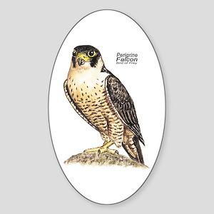 Peregrine Falcon Bird Oval Sticker