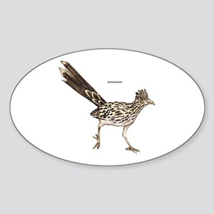 Roadrunner Desert Bird Sticker (Oval)