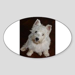 puppy west highland white terrier sitting Sticker