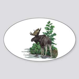 Bull moose art Sticker (Oval)
