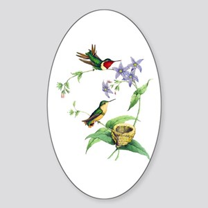 Hummingbirds Sticker (Oval)