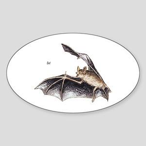 Bat for Bat Lovers Oval Sticker