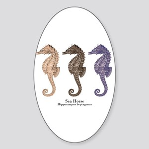 Sea Horse Vintage Art Oval Sticker