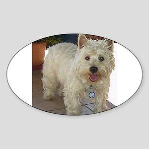 west highland white terrier full Sticker