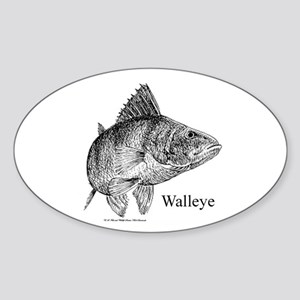 Walleye Sticker (Oval)