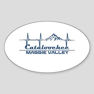 Cataloochee Ski Area - Maggie Valley - N Sticker