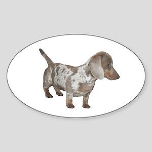 Speckled Dachshund Dog Oval Sticker