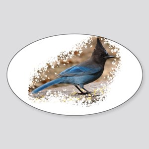 Steller's Jay Oval Sticker