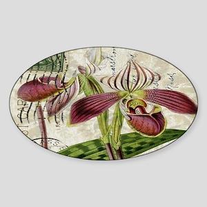 vintage orchid botanical ar Sticker