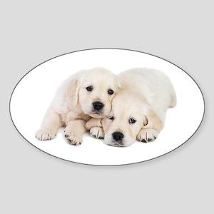 White Labradors Sticker (Oval)
